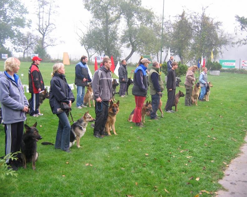 Všestranný pes Zbraslavi 2005