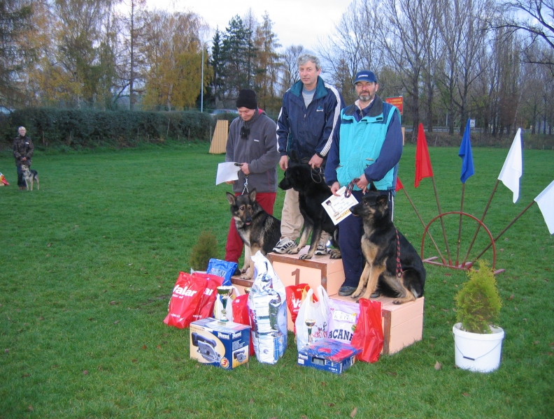 Všestranný pes Zbraslavi 2004